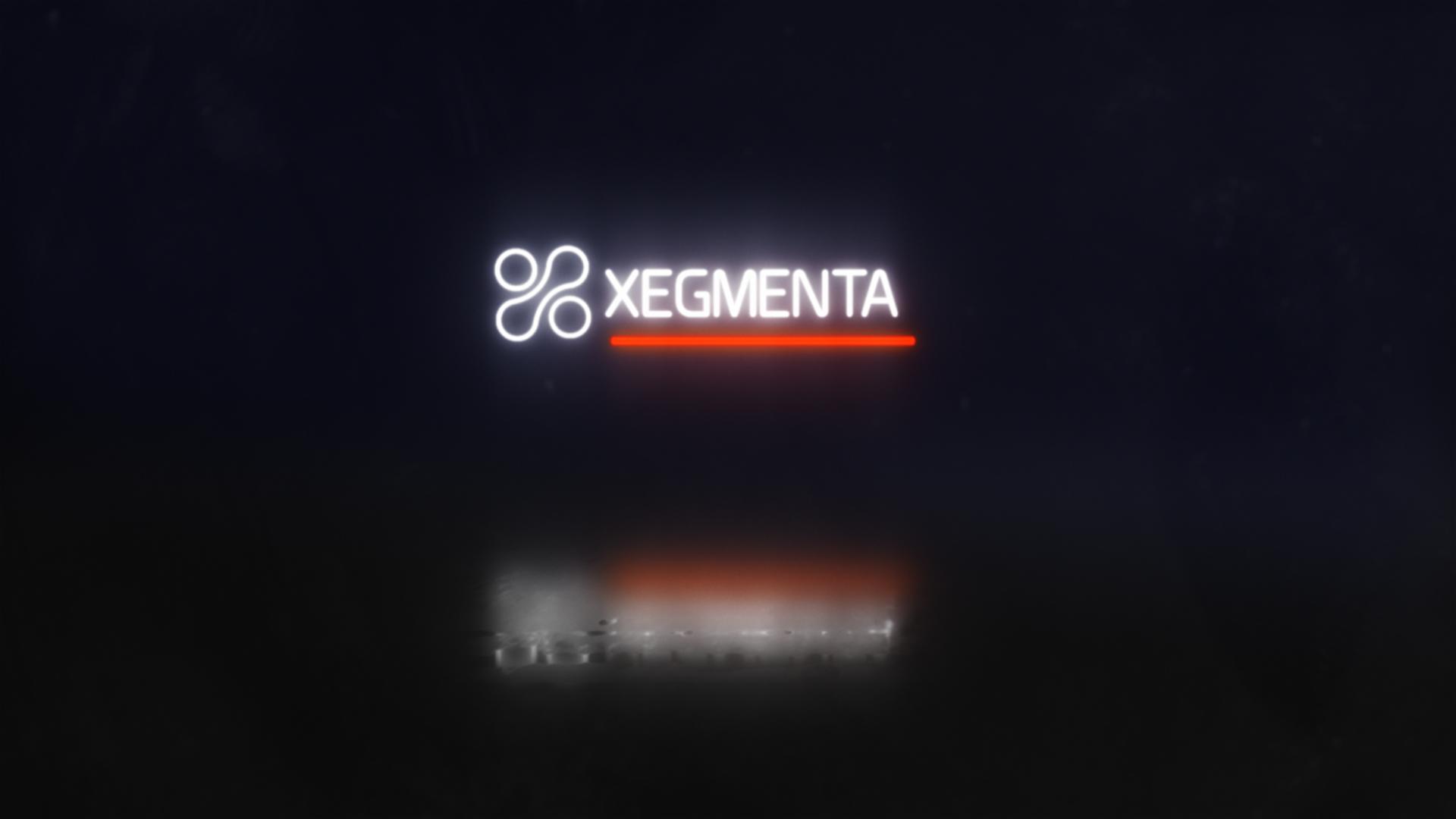 Logo Neon Xegmenta