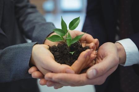 Imagen Cómo las Comunicaciones Corporativas contribuyen con el medio ambiente - Xegmenta